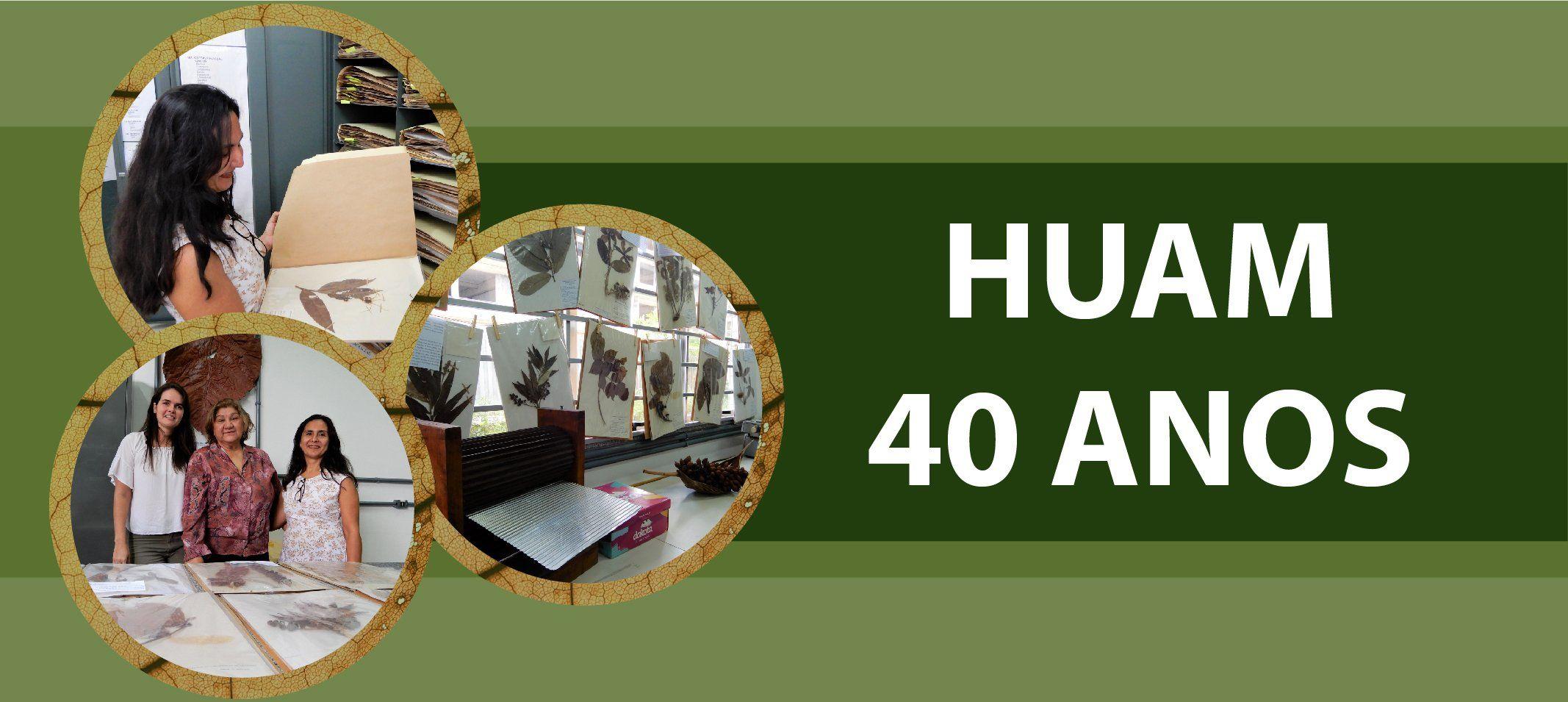 Herbário da Ufam comemora 40 anos